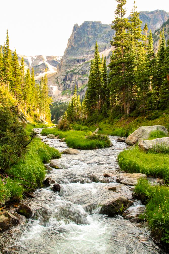 Fern creek in Rocky Mountain National Park